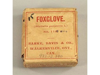 Foxglove package. Museum of Health Care, # 1977.12.140