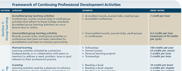 Framework of continuing professional development activities