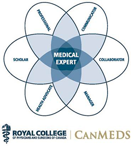 The CanMEDS diagram being discussed.