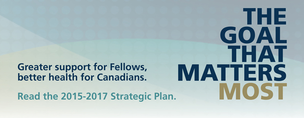 2015-2017 Strategic Plan